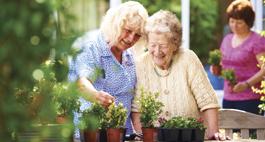 Nursing Dementia Care